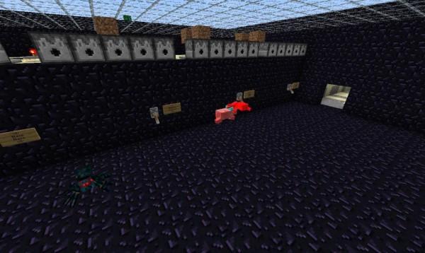 Pig-Companion-Mod-3
