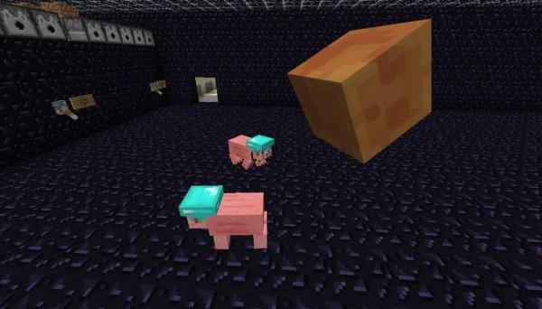 Pig-Companion-Mod-4