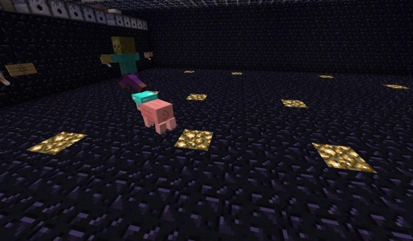 Pig-Companion-Mod-5