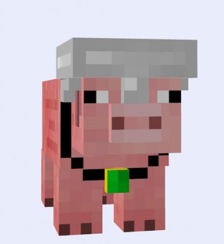 Pig-Companion-Mod-8