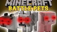 มอด สัตว์เลี้ยง หรือ Mod Useful (Battle) Pets 1.6.4 มี Level และ Skill ด้วย