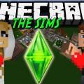 the sim