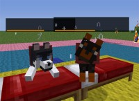 mod Dog Cat Plus (2)