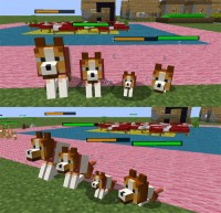 mod Dog Cat Plus (3)