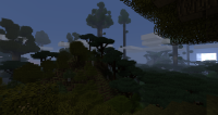 The-Twilight-Forest-5