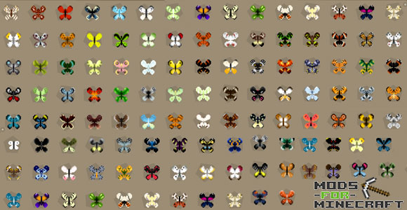 Mod Butterfly Mania (1)