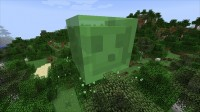 Mod Lucky Block (3)