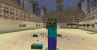 gg_-Mod-1-5-2--Mob-Amputation-Minecraft---CkTxgNC5O8