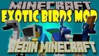 มอด สัตว์ปีก Mod Exotic Birds (1)