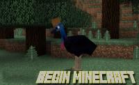 มอด สัตว์ปีก Mod Exotic Birds (6)