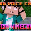 Mod Voice Chat (1)