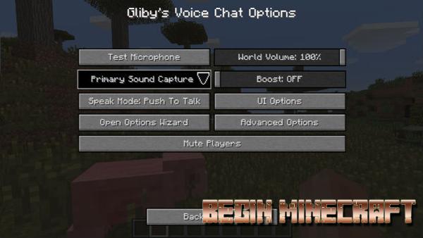 Mod Voice Chat (4)