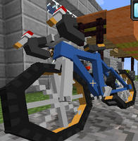 Mod PokeCycle (2)
