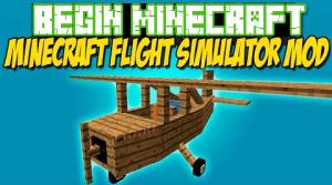 Flight Simulator Mod (1)